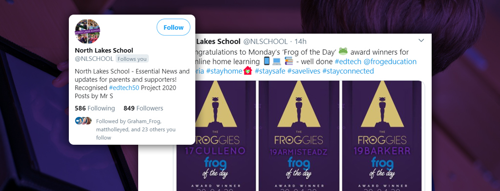 Froggies-Tweet